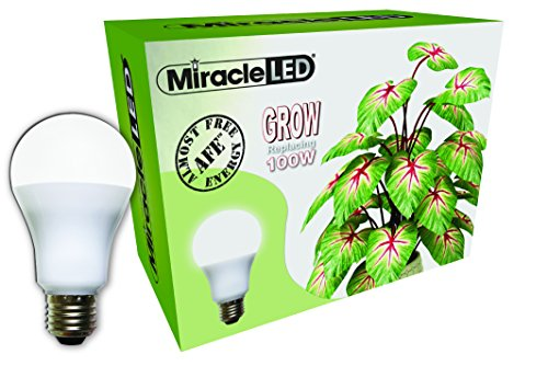 Daylight White Full Spectrum Led Indoor Plant Growing